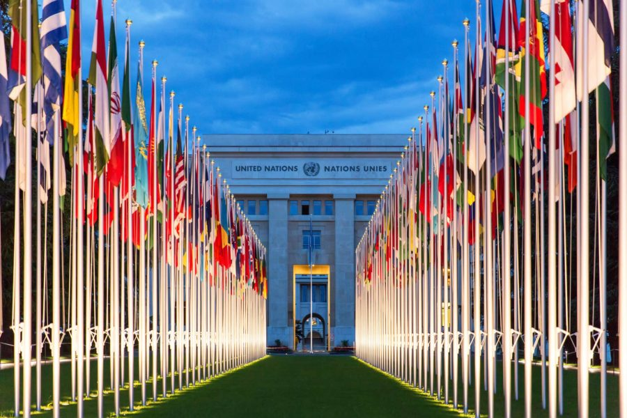 Global governance institutions in the face of geopolitical and environmental change